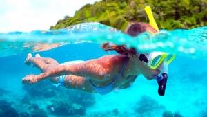 Подводный мир острова «ПАЯР»